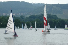 Traubenblüten-regatta 2011